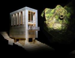 Дом - хамелеон