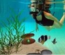 Виртуальная реальность под водой