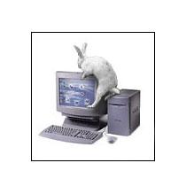 Компьютерный вирус передается по воздуху