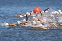 ЧЕ по плаванию в открытой воде