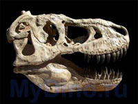 Новые факты из жизни динозавров