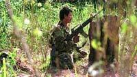 FARC ориентируется на мирное существование