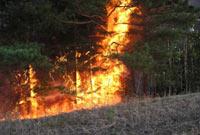 Пожары охватили Техас