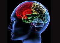 Мобильник тормозит мозг