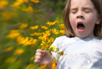 Чистота вызывает аллергию