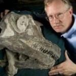 Палеонтологи нашли черепа динозавров в штате Юта