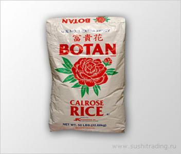 Рис Ботан