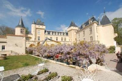 Замок с виноградником во Франции