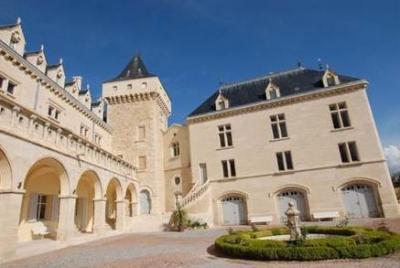 Замок с виноградником Франция